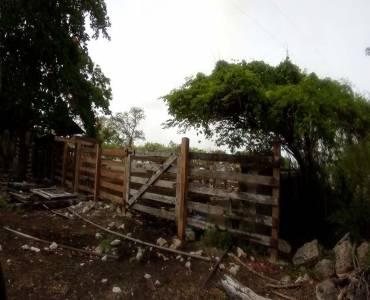 Sucilá,Yucatán,Mexico,1 Dormitorio Bedrooms,1 BañoBathrooms,Fincas-Villas,4799