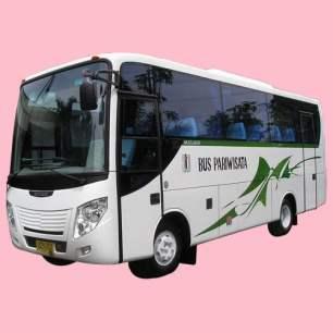 Bus Pariwisata 25-30 seats Rp. 2.500.000