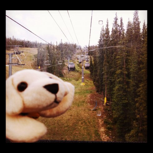 Whee! Up the Gondola to 11,000+ Feet