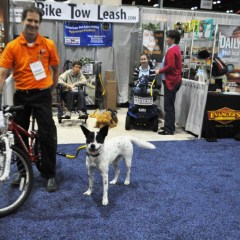 Bike Tow Leash Offers Solution to Safely Bicycle with Your Dog