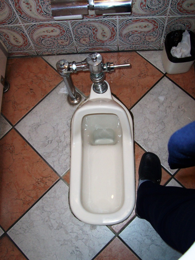 A Japanese Squat Toilet