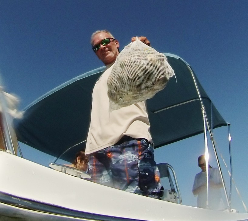 Capt. Rick Burns of Reel Burns Charters Displays the Scallops Gathered for the Day, Homosassa, Fla., Sept. 2014