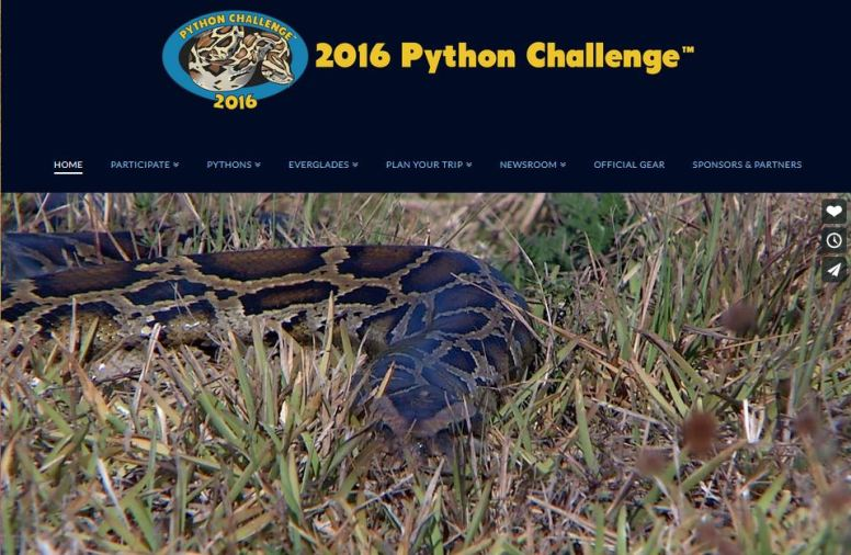 Do you have what it takes to participate in Florida's 2016 Python Challenge?