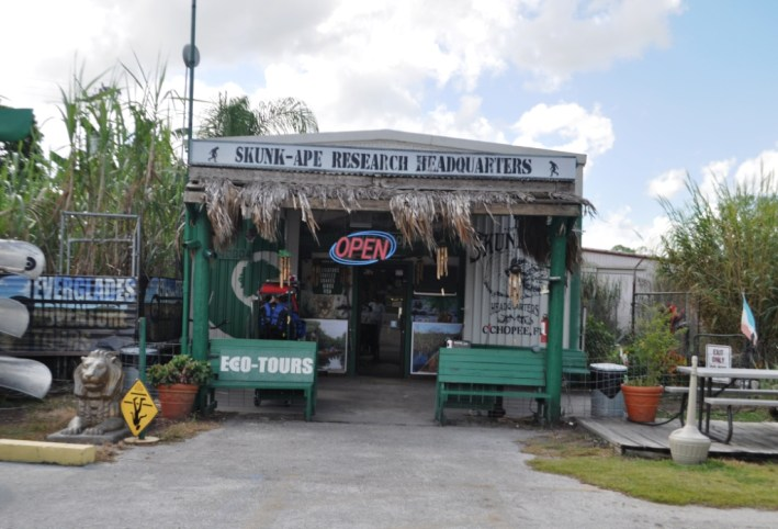Believers And Skeptics Should Spend Some Time Learning About The Skunk Ape Of The Florida Everglades