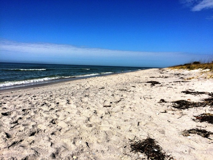 Don Pedro Island State Park is only accessible by boat.