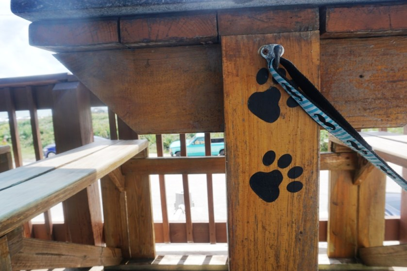 Hook Up a Leash at the Dog-Friendly Java Joint in Flagler Beach, Florida.