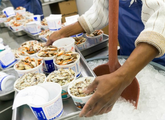 Gulf Shrimp, Crabs and Oysters, Oh My! Learning the Business of Alabama Seafood