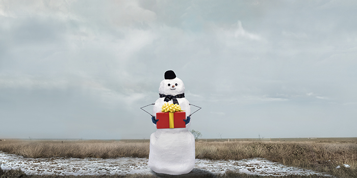 Save Snowmen from Extinction with a Unique Christmas Gift, a Gift Bundle from Cool Effect