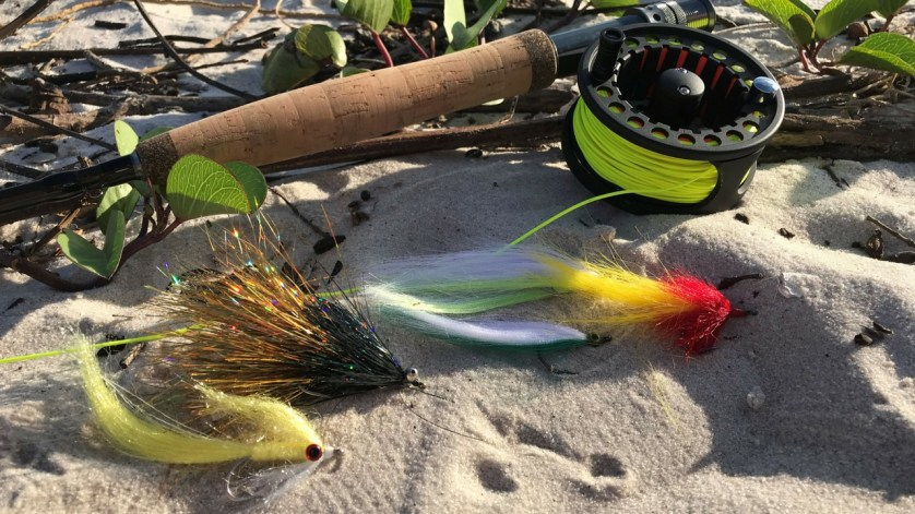 Step Up Your Angling Game by Learning to Fly Cast or Tie Flies at West Wall Outfitters in Port Charlotte, Fla.