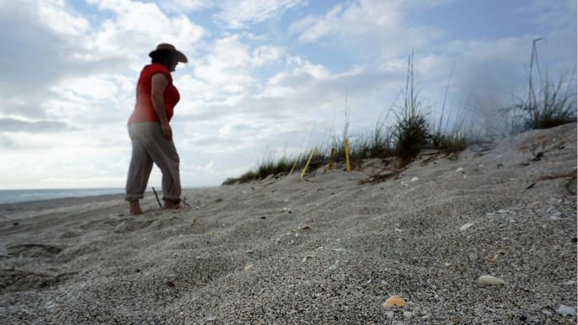 I Spy a Sea Turtle Nest. Clothing: prAna