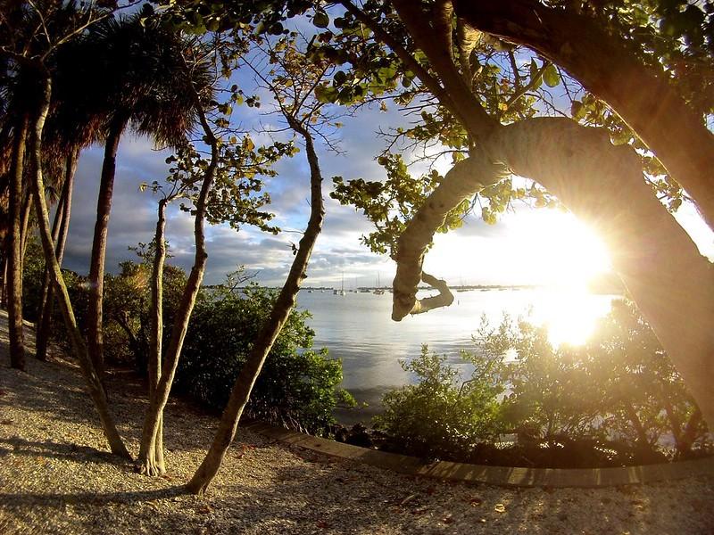 Sunset Along Sarasota Bay