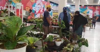 Pameran Tanaman Hias di Solo Paragon Mall