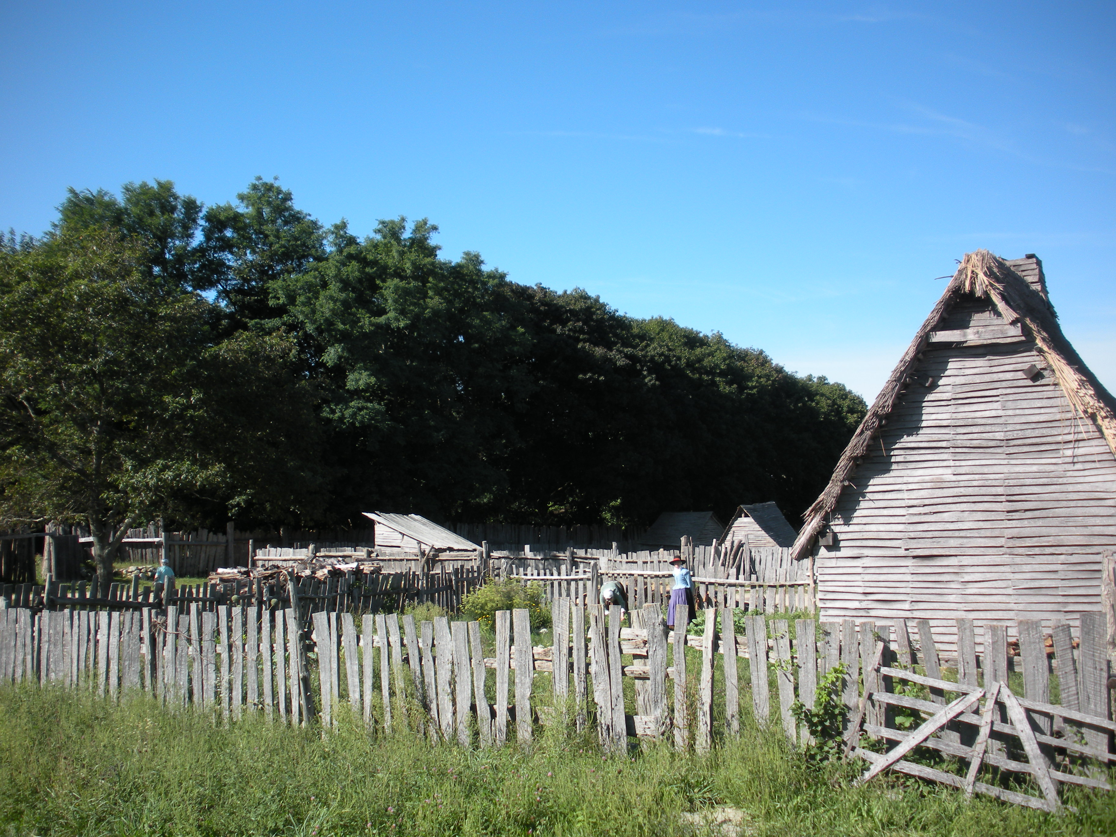 Pilmouth Plantation 014