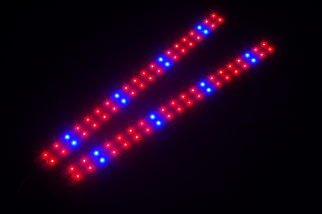 SolStrip X2 Red/Blue