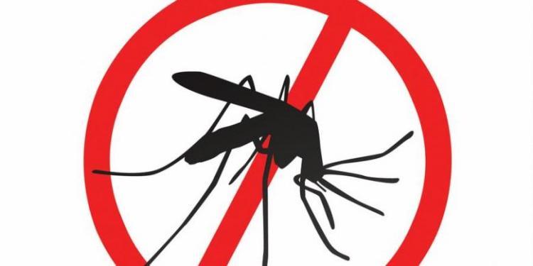 menghilangkan bekas gigitan nyamuk