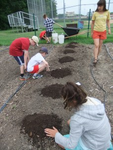 Planting melons!
