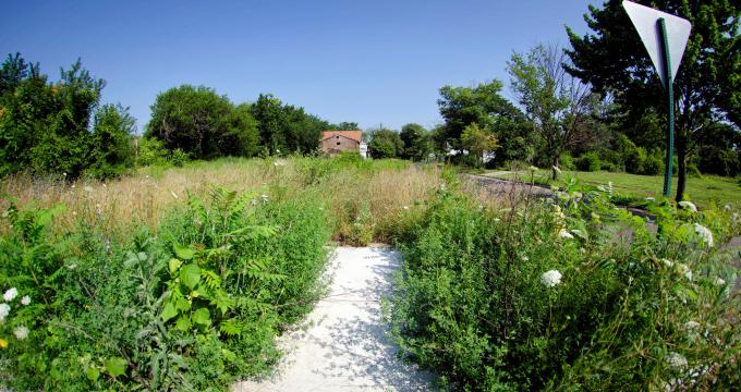 Convert vacant land into community gardens