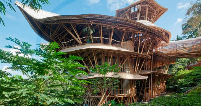 Simple treatment turns bamboo into durable building material