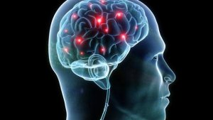 Stress Management and they synapse nerves Treatments in West Palm Beach
