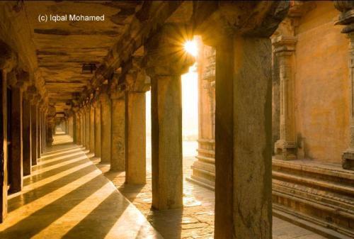 iqbal-sunlight-11