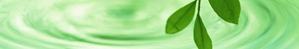 water_leaf