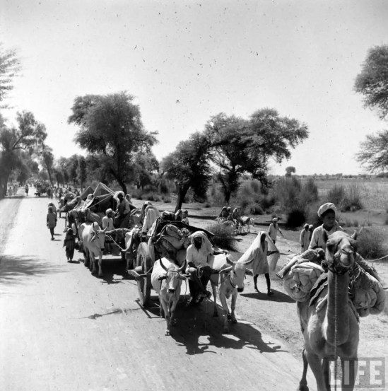 uk_india_pic_patition_camel_1947