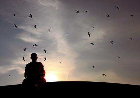 Buddha-Birds