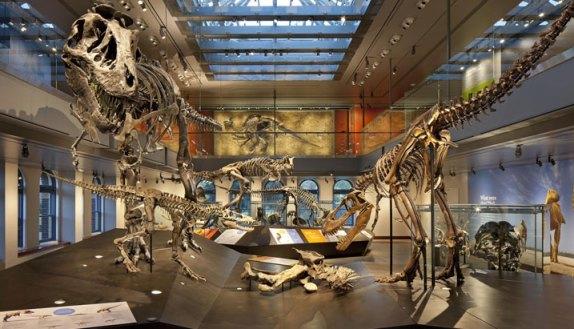 History_Science_Museum_Dinosaurs_T_rex_Jurassic_Park
