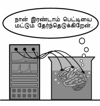 brain-in-a-vat
