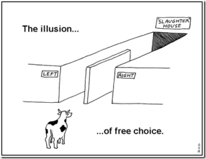 Illusion_Free_Choice_Will_Self_Perception_Cognition_Epilepsy_Diet