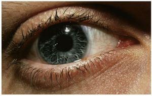 Eye_Pupils_eyesight_eyelash_face_Vision_See