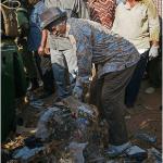 தான்ஸானியாவின் தேர்தல்