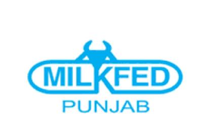 MILKFED Punjab VERKA Assistant Manager Examination 2020