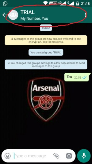 Whatsapp Group Info
