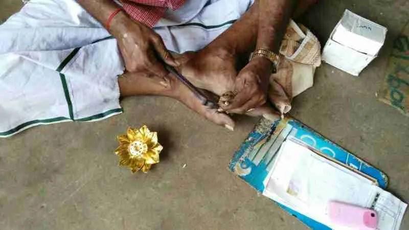 Los elefantes en la india: amuletos de la buena suerte