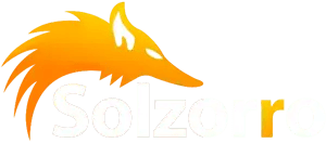 Solzorro Managed IT Support Services