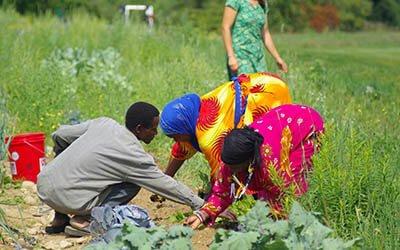 Somali Farmers at Liberation Farms