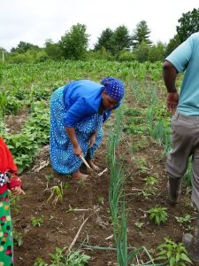 Somali Bantu woman farming at Liberation Farms