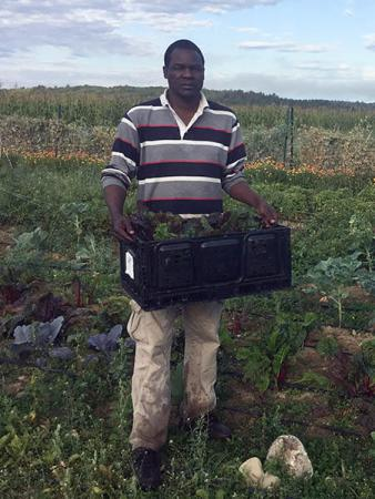 Hassan, a Somali Bantu farmer with Liberation Farms