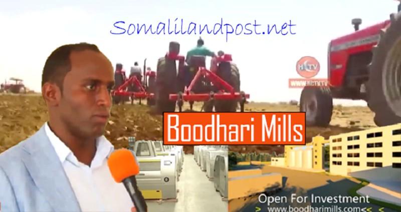 bodhari-mills