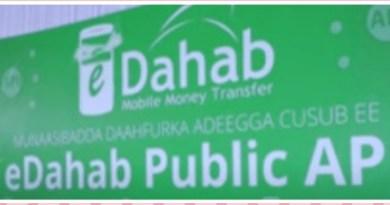 Dahabshiil Eases Online Shopping with Launch of eDahab Public API