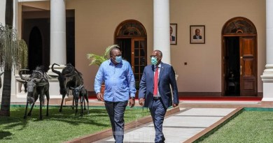 president bihi and uhuru kenyatta