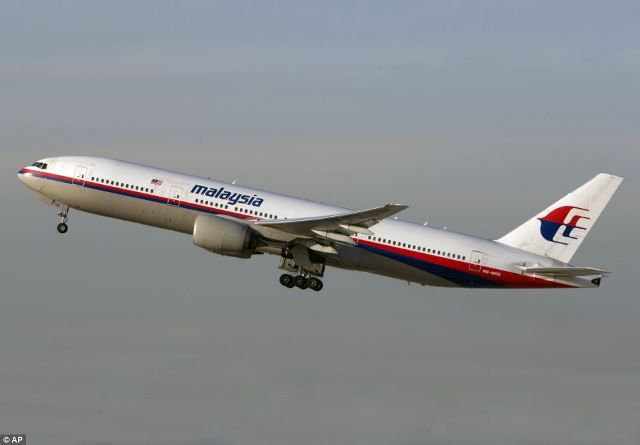 malaysia Airlines Ukraine (12)