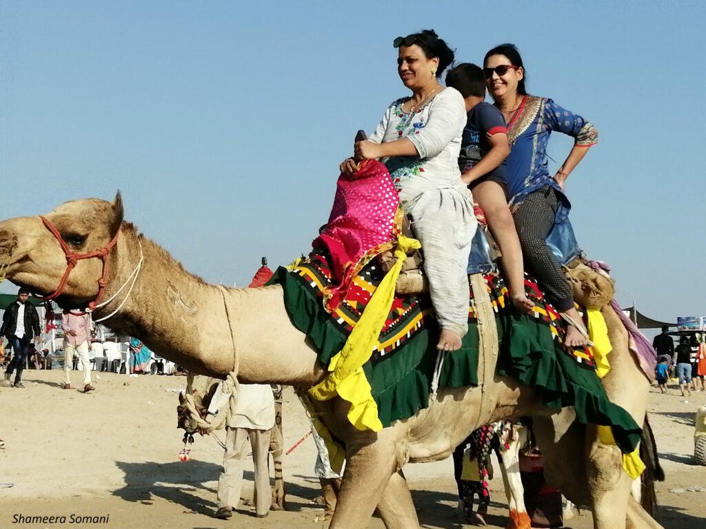 Camel Ride on Mandvi Beach