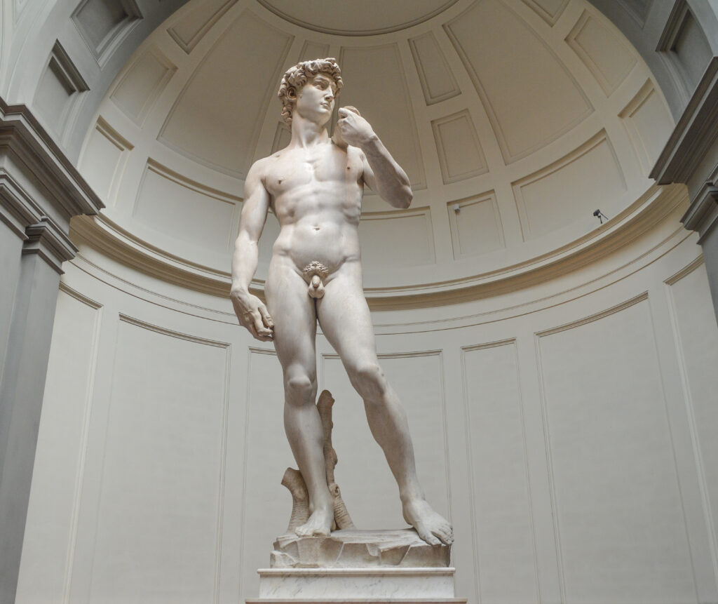 Michelangelo's magnum opus David
