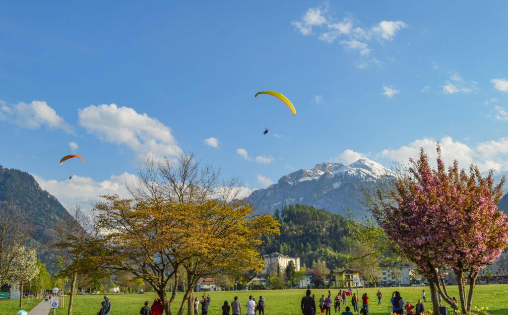 Paragliders, Interlaken, Switzerland