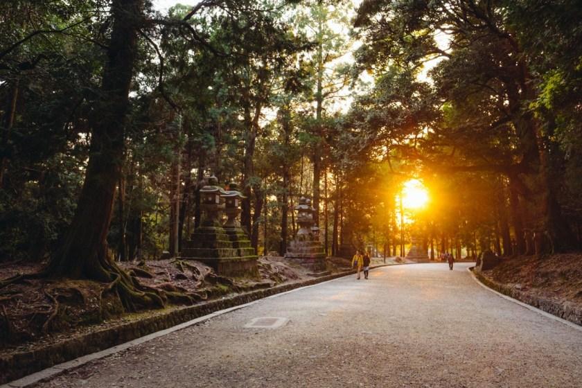 Nara Walkway in Park