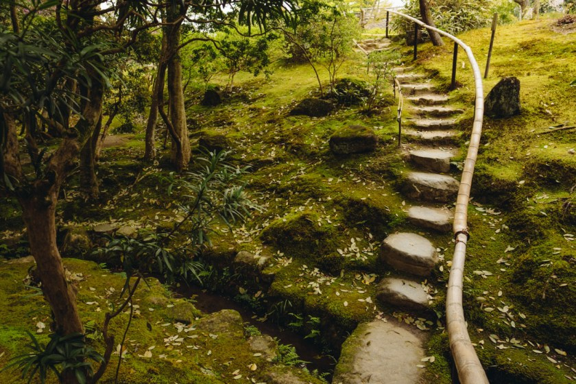 Nara Path