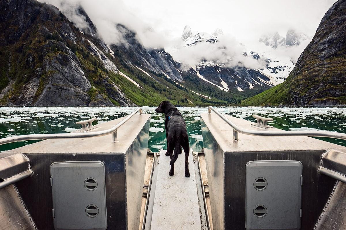 Ice at Petersburg, Alaska.
