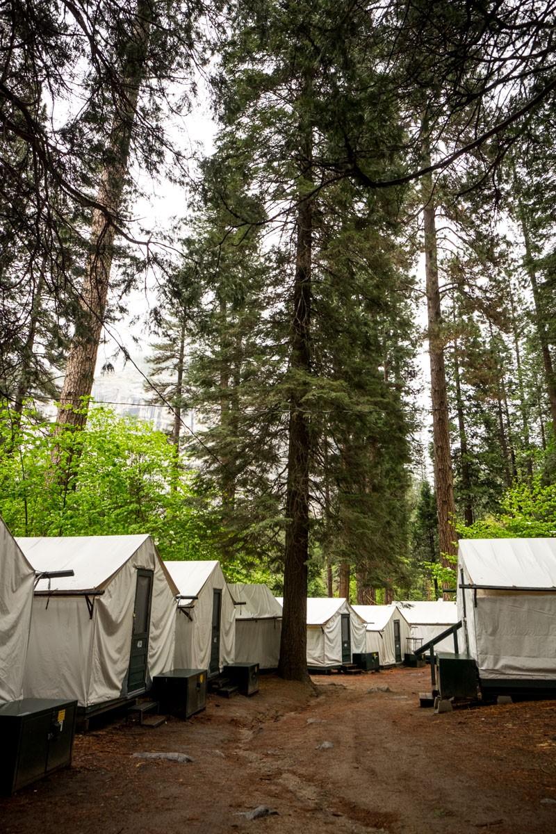 Yosemite-8652-1